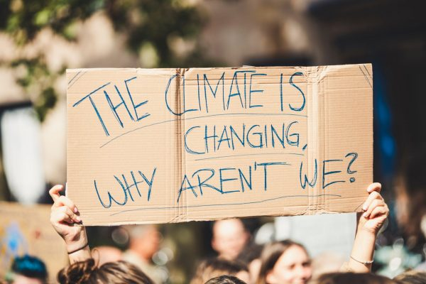 What are we waiting for?? An Open Letter to Canadian Museum and Gallery Directors from Robert R. Janes, Founder of the Coalition of Museums for Climate Justice