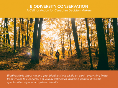 New report urges immediate biodiversity action – What can museums do?