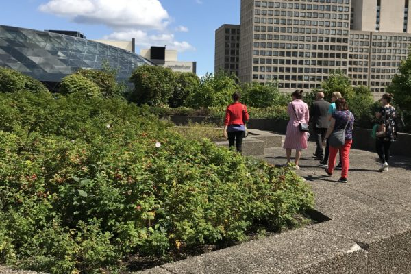 In motion – Greening our cultural institutions