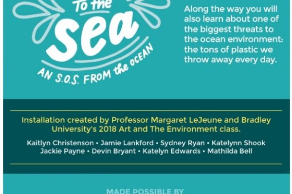 Journey to the Sea: Exploring the environment in a children's museum [Case Study]